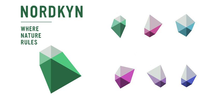 نمونه لوگوی دینامیک Dynamic از انواع لوگو- لوگوی نوردکین Nordkyn