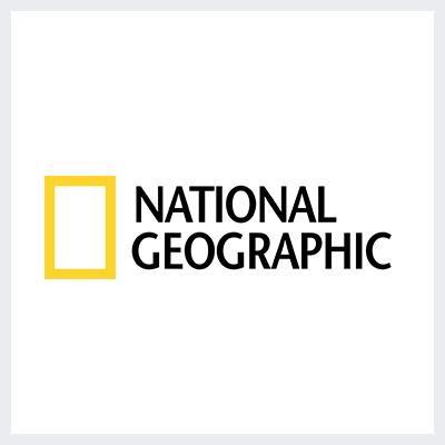 لوگوی زرد برند نشنال جئوگرافیک - انتخاب رنگ لوگو: معنی و روانشناسی رنگ در طراحی لوگو